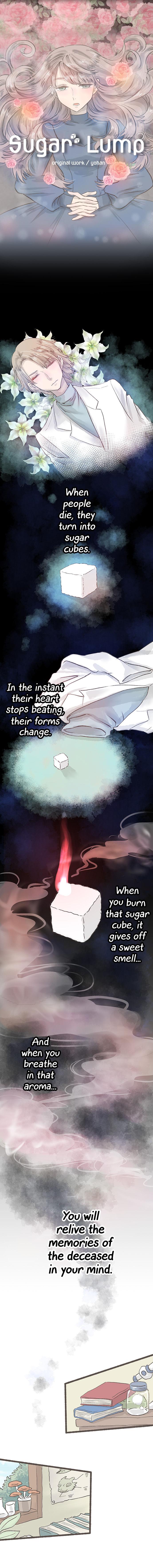 Sugar Lamp (Gunshi KUMA) 1 Page 2