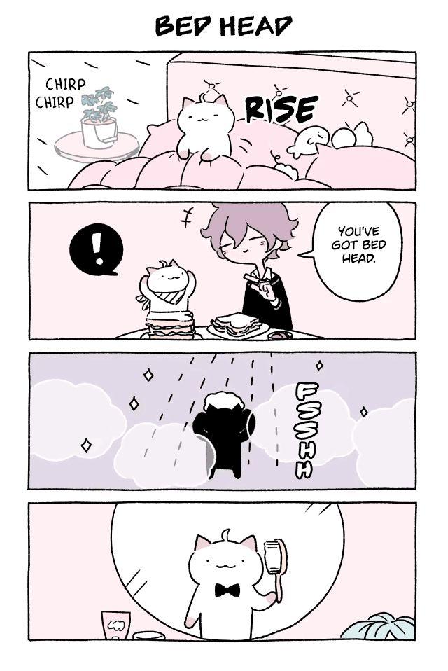 Fushigi Neko no Kyuu-chan 243 Page 1