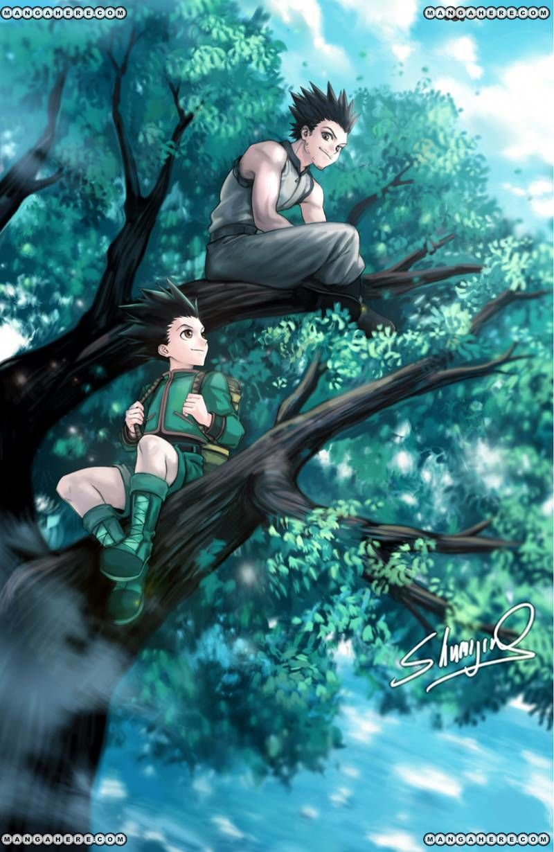 Hunter X Hunter 370 Page 2