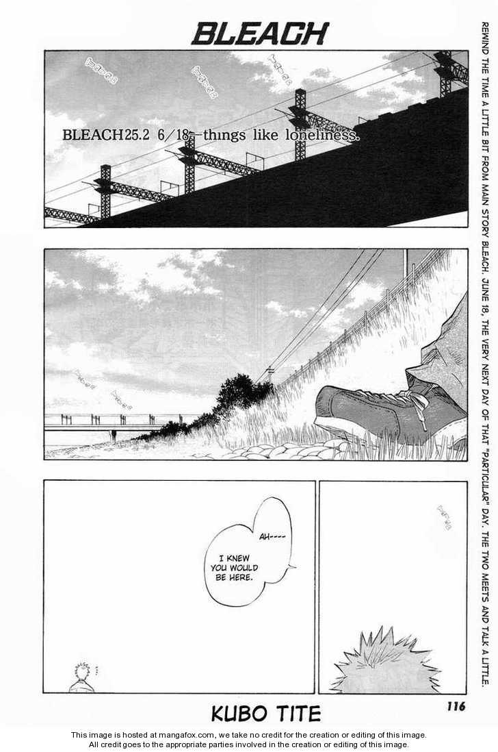 Bleach 25.2 Page 1