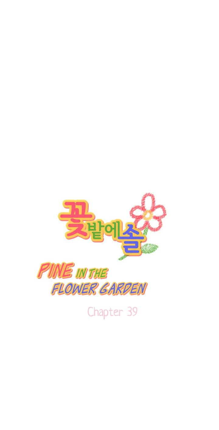 Pine in the Flower Garden 39 Page 1