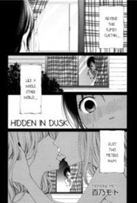 Hidden in Dusk