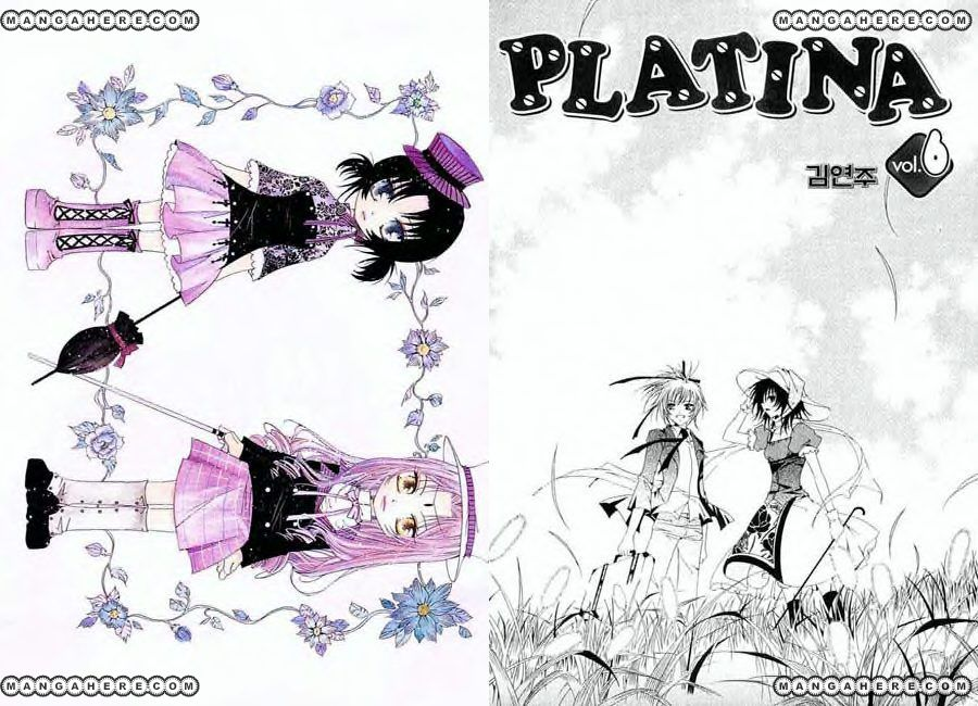 Platina 1 Page 2