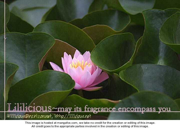 Solfege - Sweet Harmony 3 Page 1