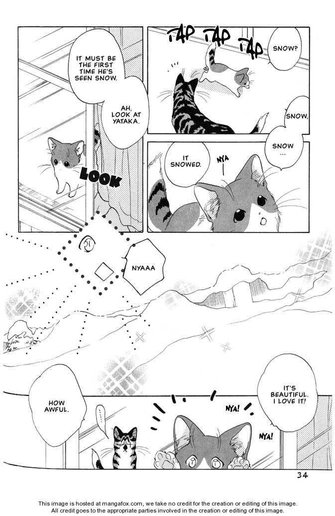 Shippo no Kimochi 5 Page 3