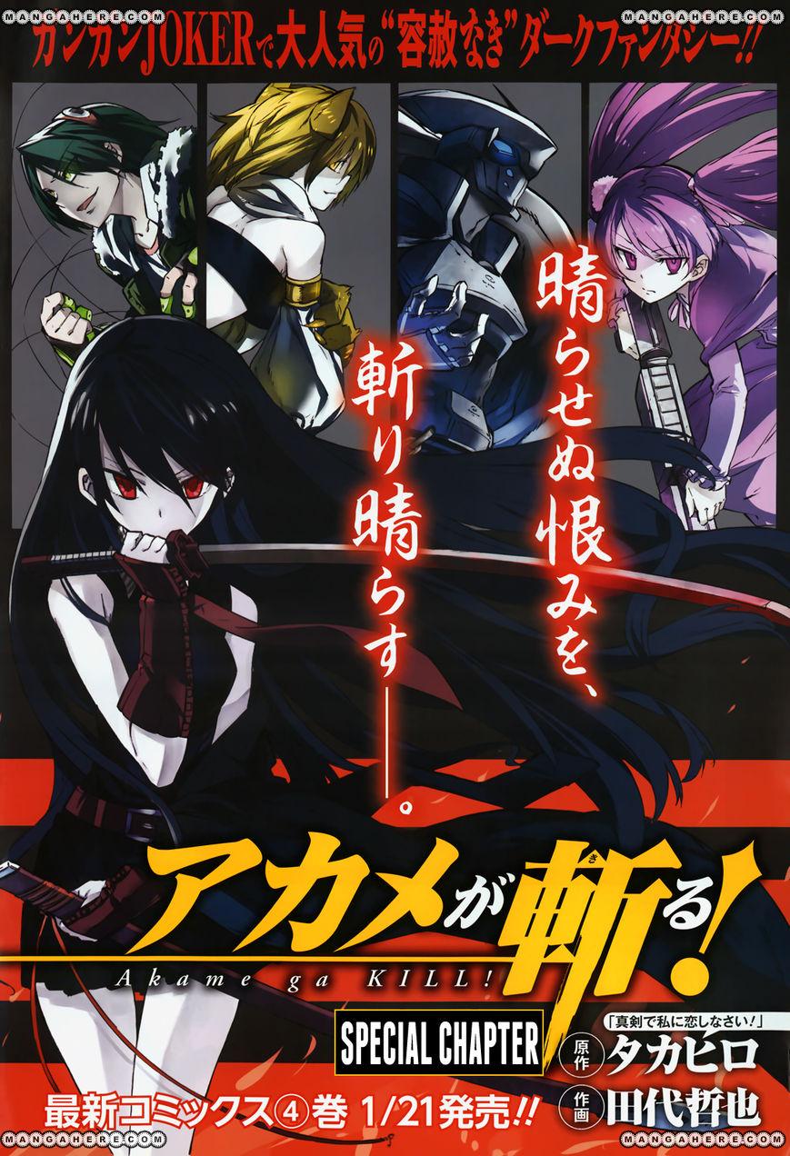 Akame ga Kiru! 23.5 Page 3